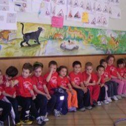 attività motoria scuole 1